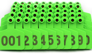 Green 1 100 Numbers Plastic Medium Livestock Ear Tag For Cow Cattle Pack Ear Tag