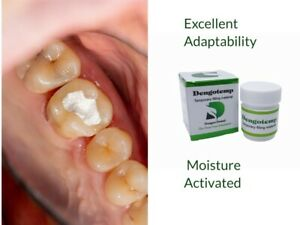 Dental Cavity Temporary Filling Material 40 G Paste 44030 White Self Cure