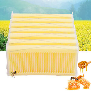 new 7pcs Automatic Raw Frame Honey Beekeeping Beehive Hive Frames Harvesting