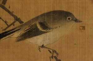 Japanese Painting Hanging Scroll Japan Plum Nightingale Antique Warbler 921p