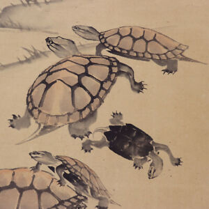 Japanese Painting Hanging Scroll Japan Old Turtle Antique Art 974p