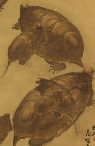 Japanese Painting Hanging Scroll Japan Old Turtle Antique Art E719