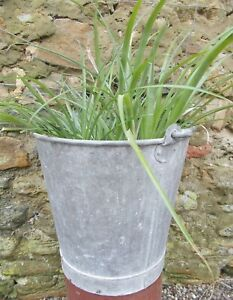 Vintage Galvanised Tub Bucket Pail French Plant Display Garden Light Col