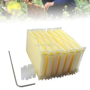 7pcs Auto Beehive Frame Comb Beehive Frame Beekeeping Hive Fits Household Tools