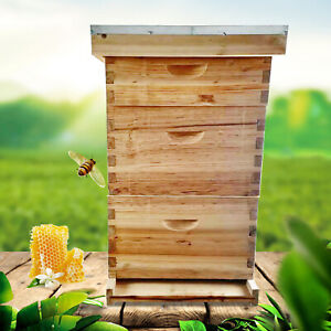 Bee House 3 Layer 8 Frame Box Kit Wax Coated For Beekeeping W partition Board Us
