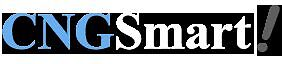 Best Cng Domain And Community Oriented Website For Sale Cngsmart com