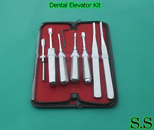 6 piece Dental Tooth Elevator Kit Surgical Instruments