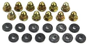 Mustang Tail Light Panel Molding Nuts 1970 1971 1972 1973 Amk