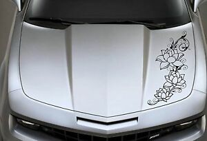 Lotus Flowers Car wall Etc Graphic Vinyl Decal Sticker price For One Decal