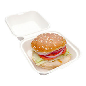 Collezione Pulpa Bagasse Hamburger Take Out Clamshell 6 Inches 100 Count Box