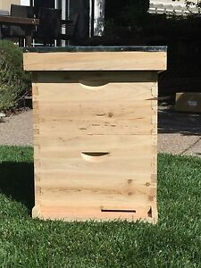 2 Level Bee Hive Box Set