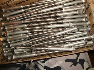 5 16 X 5 Stainless Steel Lag Bolts 80 Total St 451