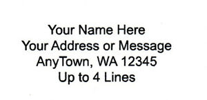 30 Personalized Return mailing Address Labels 1 X 2 625 Free Usa Shipping