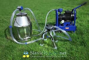 Cows Milking 5 3 Us Gal Stainless Electric Milking Machine Bucket Milker Extras