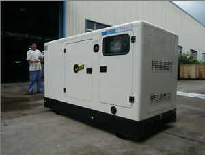40 Kva 30kw Perkins Engine Diesel Power Generator With Epa For Usa And Canada