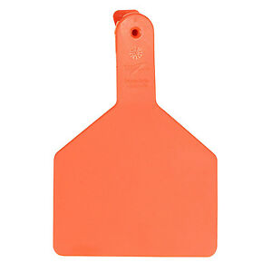 Z Tags 9053601 Large Blank Tags For Livestock Orange 25 Count