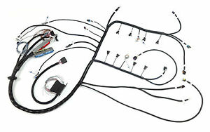Drive By Wire Vortec T56 Non Electric Stand Alone Ls Swap Harness