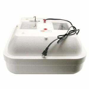 Small Egg Incubator 110v 25w Heated Air Chicken Quail Duck Poultry Farm Hatch