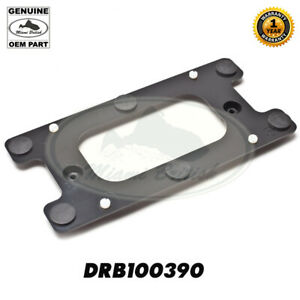 Land Rover Rear License Plate Bracket Discovery 2 Ii 99 04 Drb100390 Oem