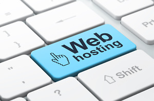 Website Hosting Pay Once And Keep It Forever 20 Accounts Resell