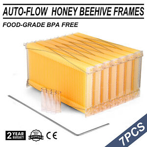 7pcs Beehive Flowing Honey Beehive Frames Kit Raw Bee Hive Frames Beekeeping