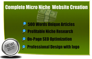 Adsense Approved Seo Optimized Niche Website An Easy 100 500 Per Month