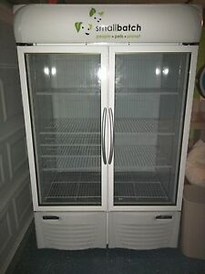 Minus Forty Commercial Freezer 40 Cubic Feet 44 udgf Excellent Condition