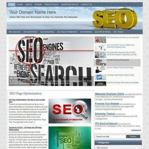 Seo Search Engine Optimization Blog Online Affiliate Business Website For Sale