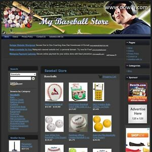Baseball Store Professionally Designed Affiliate Website For Sale free Domain