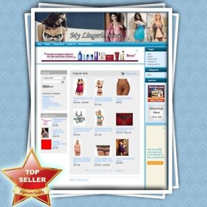 Lingerie Store Professionally Designed Dropship Website With Amazon Adsense