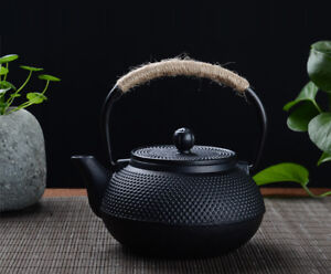 Japanese Japan Cast Iron Teapot Kettle Pot Small Nail Black 600ml
