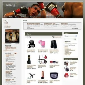 Established Online Boxing Store Business Website For Sale Make Money At Home