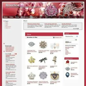 Established Jewelry Brooches Online Business Website For Sale Free Domain Name