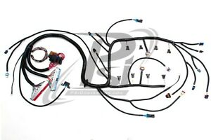 1997 2002 Ls1 lsx Psi Standalone Wiring Harness W t56 Or Non elec dbc