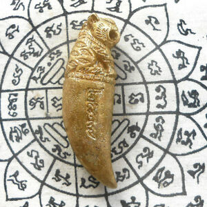 Magic Holy Tiger Canine Fang Brass Thai Amulet Statue Life Protect Talismans
