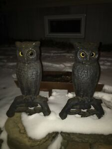 Antique Pair Owl Fireplace Andirons With Original Glass Eyes