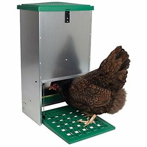 Poultry Feeders Automatic Treadle For Chickens And Other 9 Hens 44 Pounds Of