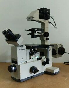 Olympus Microscope Imt 2 Phase Contrast And Fluorescence