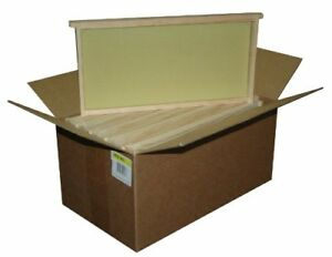 10 Pc Assembled Bee Hive Frame Waxed Natural Foundation Honey Box Keep Pack Set