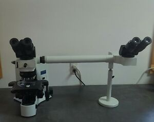 Olympus Microscope Bx41 With 2x And Side By Side Bridge