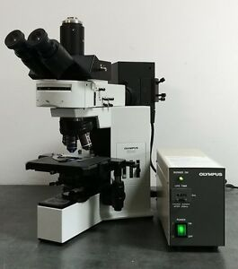 Olympus Microscope Bx40 With Fluorescence And Trinocular Head