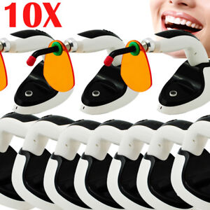 10x Dental Wireless Cordless Led Curing Light Lamp 2000mw Orthodontics 10w usa