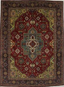 Large Handmade Vintage 10x13 Persian Area Rug Wool Oriental Home D Cor Carpet Sa