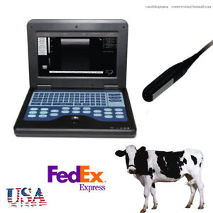 Animal pets Portable Medical Laptop Machine Veterinary Ultrasound Scanner rectal