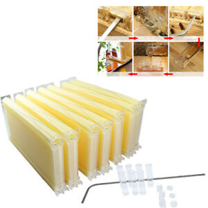 7pcs Automatic Honey Beekeeping Beehive Raw Bee Comb Hive Frames Harvesting Us