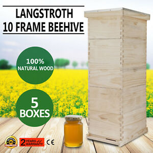 10 frame Bee Hive Free Shipping