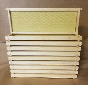10 Langstroth Medium Bee Hive Frames With Rite cell Foundations