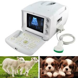 3d Vet Portable Digtal Ultrasound Scanner With Convex Probe Free Ship Fda