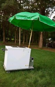 Ice Cream Cart 7 0 Cu Mobile Freezer Chest Vending Push Vendor Ge Subzero
