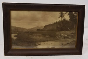 Antique Photograph Of Tropical Area Hawaii Ethnographic Pacific Islands